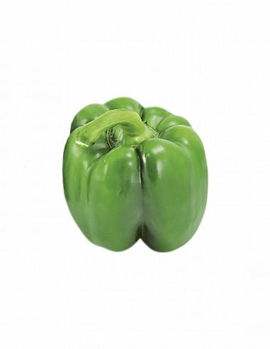 Poivron vert 大青椒 par kilo